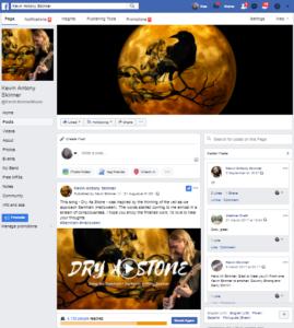 Social Media Management Musician Facebook